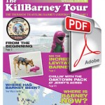 KillBarney Tour Ebook