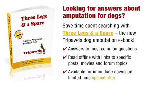 Download tripawds e-book for fast answers to dog amputation questions