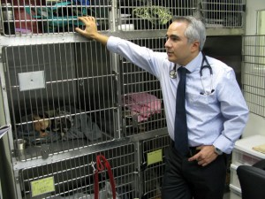 Veterinary Oncologist Dr. Johnny Chretin VCA West Los Angeles