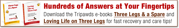 Download Tripawds e-books for fast answers to dog amputation questions!