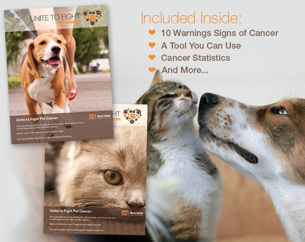 Unite To Fight Pet Cancer Info Kit