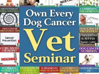 dog cancer guide