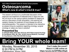 osteosarcoma dogs treatment