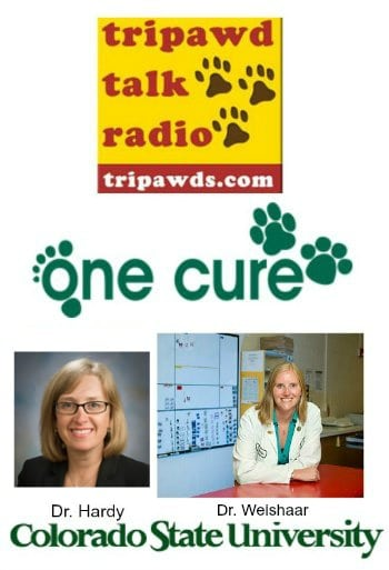 CSU One Cure Comparative Oncology