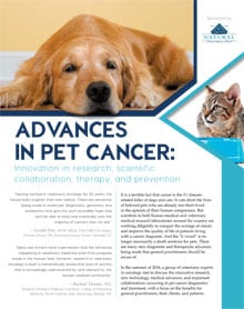 pet cancer treatment