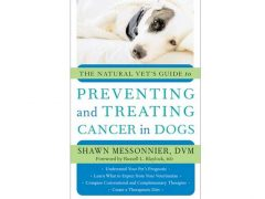 Preventing and Treating Cancer in Dogs Ebook