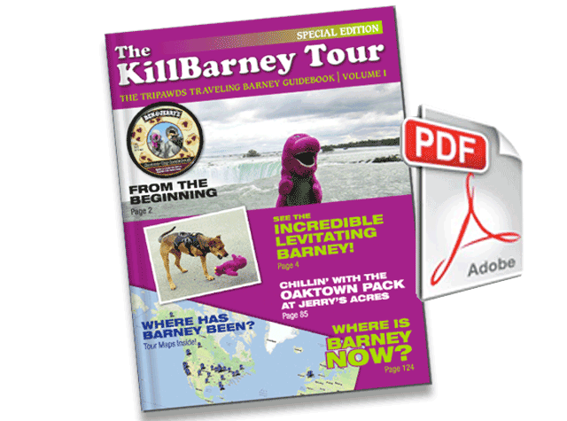 Tripawds KillBarney Tour Ebook