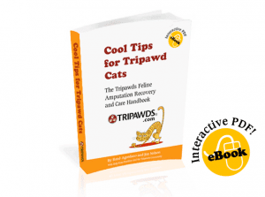 Cool Tips for Tripawd Cats Ebook