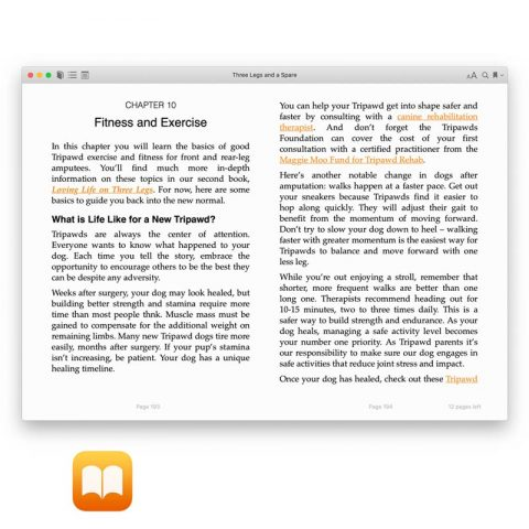 ibooks pages