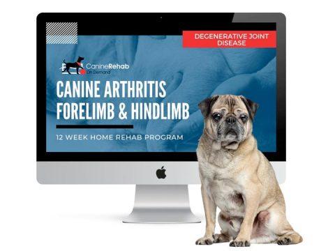 Canine Osteoarthritis Rehab On Demand