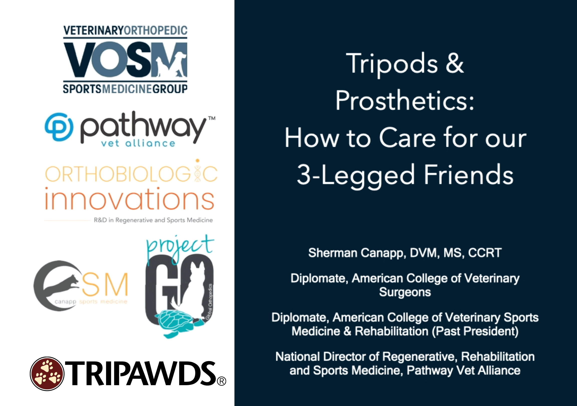 Tripawds and Prosthetics
